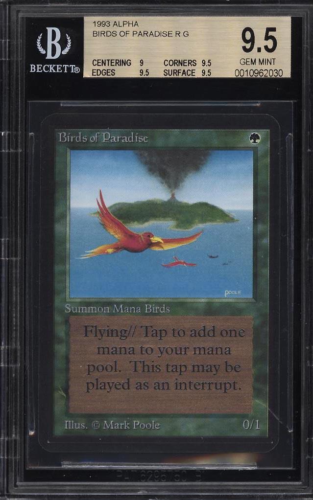 1993 Magic The Gathering MTG Alpha Birds Of Paradise R G BGS 9.5 GEM MINT