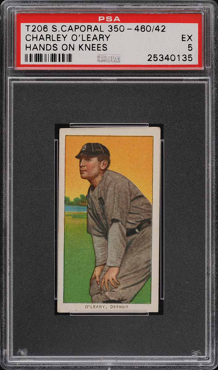 1909-11 T206 SETBREAK Charley O'Leary HANDS ON KNEES, SC FACTORY 42 PSA 5 (PWCC) - Image 1